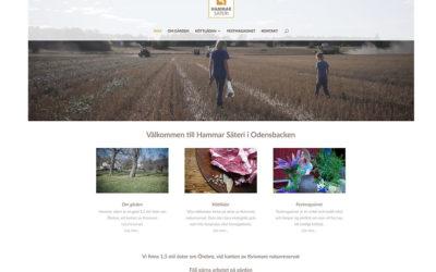 Ny webbsida för Hammar Säteri i Odensbacken