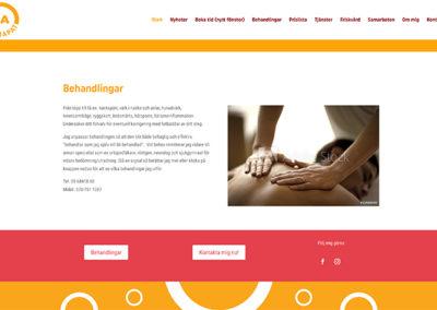 Webbsida för JAnaprapat