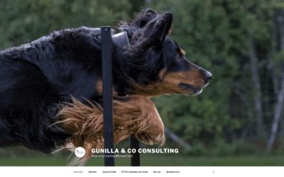 Ny webbsida åt Gunilla & Co Consulting