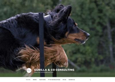 Webbsida för Gunilla & Co Consulting